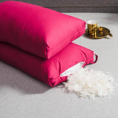 2018新款-出口欧美原单高端正品白鹅羽毛枕枕芯 低枕 红 (48*74cm)