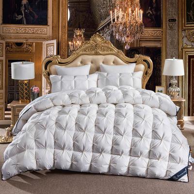 羽绒被 鹅绒被  羽绒枕 羽绒床垫 冬被 被 芯 子 出口欧美原单外观专利飞边扭花 150x200cm5斤 白色