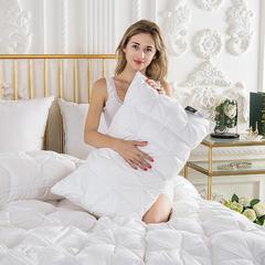 羽绒枕  羽绒枕芯  羽绒被 鹅绒被  羽绒床垫  出口欧美 爆款枕芯 低枕白色