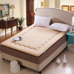 缘自淘家纺 加厚保暖秋冬羊羔绒床垫床褥 90*200cm 羊羔绒床垫驼色