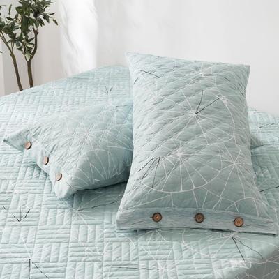 2020新款全棉印花夹棉绗绣系列单枕套 48cmX74cm/对 淑女格