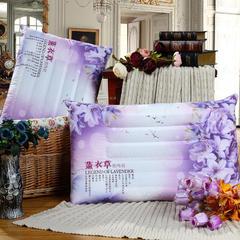 炫彩印花保健枕系列-熏衣草  紫色 48*74