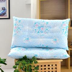 10元特价定型枕 45*70cm 花粉世家-蓝