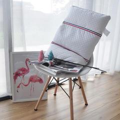 时尚荞麦两用枕 74x48cm