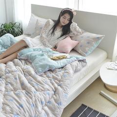韩式水洗棉保暖春秋被冬被(模特图) 150*200cm(冬被) 小雏菊
