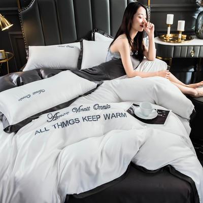 2021新款水洗真丝刺绣四件套(盛夏系列) 1.5m床单款四件套 白+深灰
