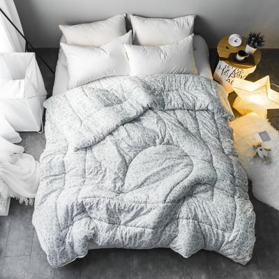 水洗棉清新冬被第一批原图 150*200  4斤 雅韵
