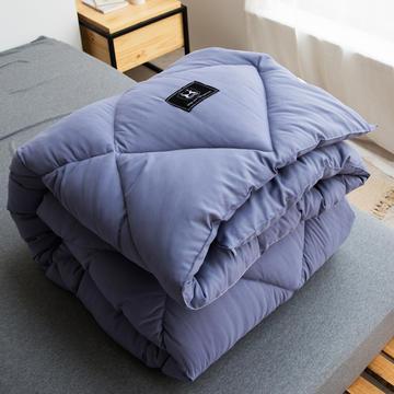 加厚斜纹水洗棉洛可可系列冬被被子被芯 150x200cm(4斤) 紫灰