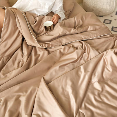 2020新款纯色水洗真丝艾草抗菌夏被四件套 三件套 单品枕套48X74cm/对 香槟咖
