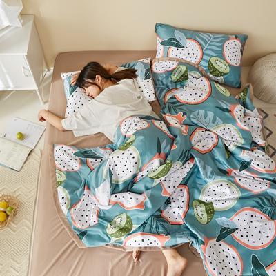 2020新款水洗真丝印花夏被四件套三件套 单品枕套48X74cm/对 火龙果