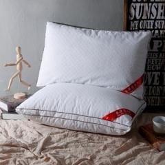 蕾丝羽丝绒枕 白色