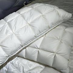 12格/15格/24格羽绒枕芯 24格白色(48*74cm)