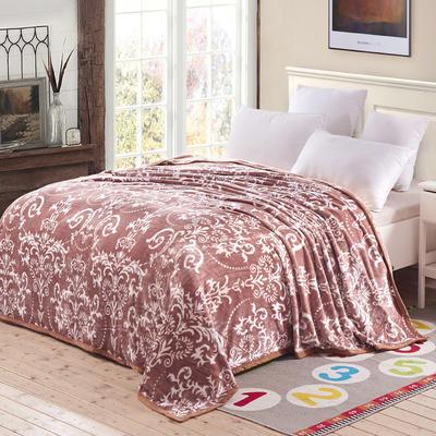 双面绒毯子超柔加厚云貂绒毛毯法莱绒毛毯 床单盖毯 48cmX74cm拉链枕套一只 欧式风情咖