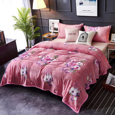 双面绒毯子超柔加厚云貂绒毛毯法莱绒毛毯 床单盖毯 48cmX74cm拉链枕套一只 花海