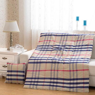 2021新款全棉印花抱枕被系列 大号50*50展开150*195cm) 美丽印象