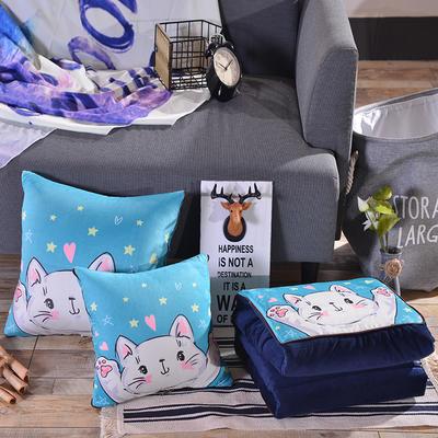 2020新款加厚双面水晶绒印花抱枕被 40X40展开105*150 伸手猫