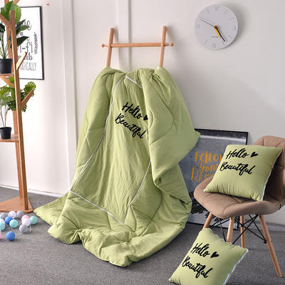 2020新款水洗棉刺绣抱枕被 40X40展开105*150 嫩绿