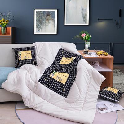 2020新款-3D麻布抱枕被 小号40x40展开100*150 坚强仙人掌