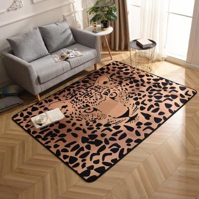 2019新款北欧印象风格硬质地毯 150*200 美洲豹金