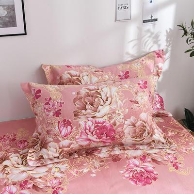 2019新品-斜纹活性磨毛单枕套 植物羊绒澳棉化纤磨毛枕套 48cmX74cm / 对 菲儿花园