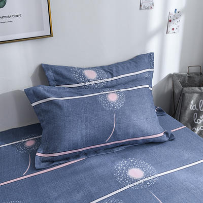 2019新品-斜纹活性磨毛单枕套 植物羊绒澳棉化纤磨毛枕套 48cmX74cm / 对 时尚天空