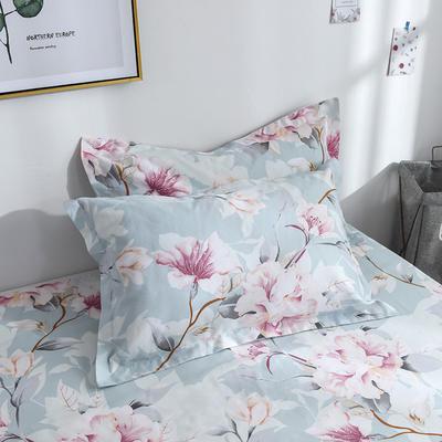 2019新品-斜纹活性磨毛单枕套 植物羊绒澳棉化纤磨毛枕套 48cmX74cm / 对 睡美人