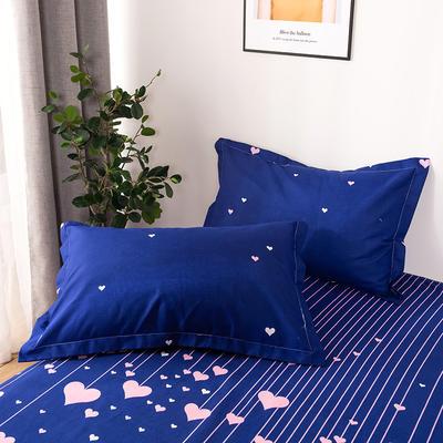 2019新品-斜纹活性磨毛单枕套 植物羊绒澳棉磨毛枕套暖阳棉 48cmX74cm / 一对 心灯