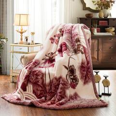 加厚拉舍尔毛毯 150*200cm(4斤) 632豆沙