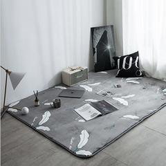 地毯地垫 (定制款) 100cm*160cm床边垫 羽毛-灰