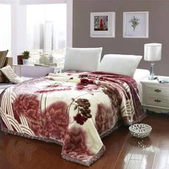 毛毯 加厚双层 拉舍尔毛毯4斤-12斤全规格 150*200cm4斤 云朵
