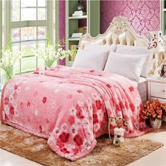 凤凰林 毛毯 加厚双层 拉舍尔毛毯4斤-12斤全规格 150*200cm4斤 纳迪粉