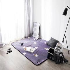 凤凰林  可定制 2018新款地垫圆网花型  客厅地毯地垫茶几垫飘窗垫脚垫防滑垫 45cmx75cm(门垫) 公主猫  可定制