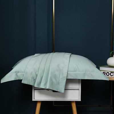 2021新款100支长绒棉纯色系列(单枕套) 48*74cm/对(5cm宽边) 繁星蓝