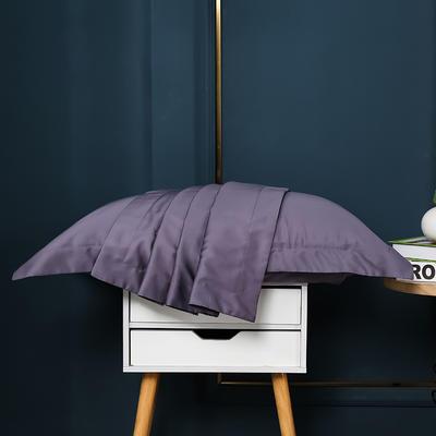 2021新款100支长绒棉纯色系列(单枕套) 48*74cm/对(5cm宽边) 千黛紫