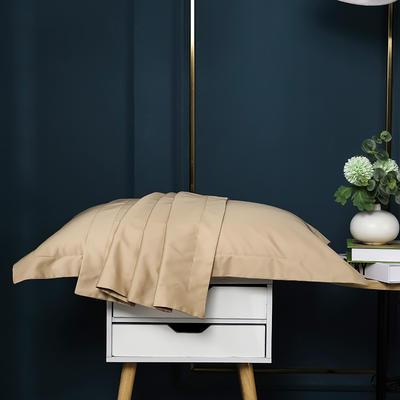 2021新款100支长绒棉纯色系列(单枕套) 48*74cm/对(5cm宽边) 香槟金