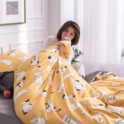 2019新款13372棉加绒保暖四件套 1.35m床单款三件套 功夫猫
