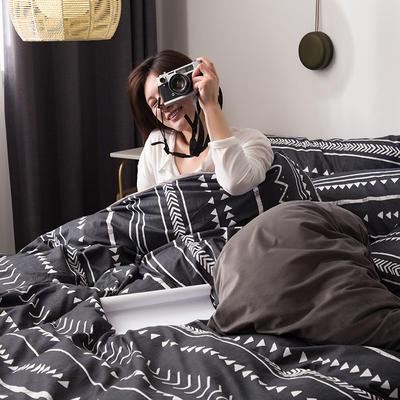 2019新款13372棉加绒保暖四件套 1.5m床单款四件套 夜寐