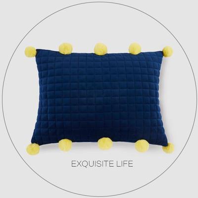 2019新款-轻奢抱枕含芯 50*35cm/含芯 021#