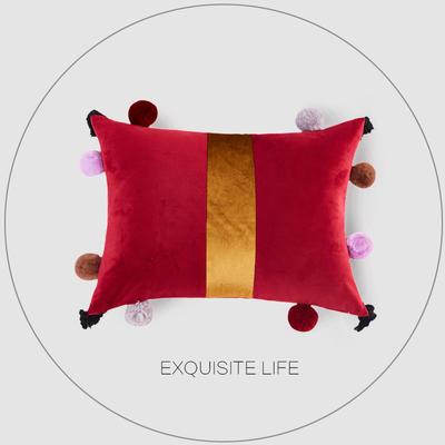 2019新款-轻奢抱枕含芯 长方形35*50/含芯 025#