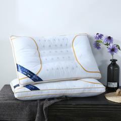 全棉绗绣全磁石保健枕头枕芯