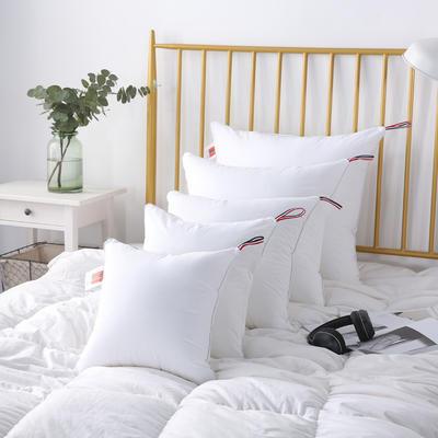 2020新款枕头 全棉防雨布多规格抱枕芯 40*40cm/个 抱枕芯