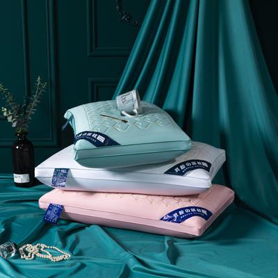 2020新品枕芯  天丝乳胶功能枕头-48*74cm/个 湖蓝色