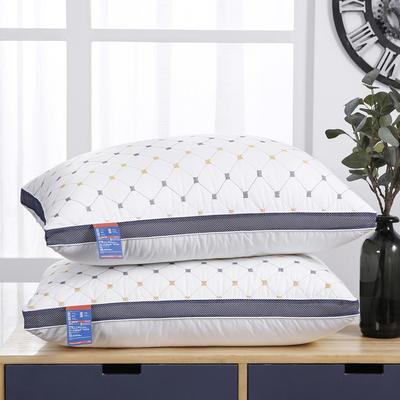 2021新款磨毛蓝网绗绣小方格枕枕头枕芯48*74 cm/个 磨毛蓝网绗绣小方格 枕