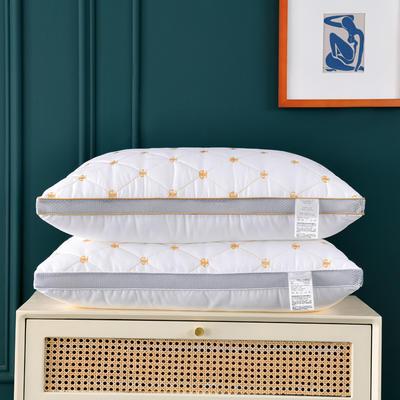 2021新款磨毛双G刺绣枕头枕芯48*74 cm/个 白色