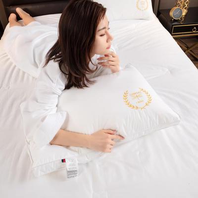 2021新款双边绣花小蜻蜓枕头枕芯48*74 cm/个 白色