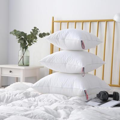 2021新款全棉防雨布多规格抱枕头枕芯 30*50cm白色 /个