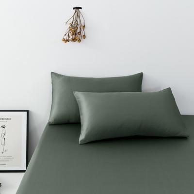2019新款-天丝单品枕套 48cmX74cm 松绿