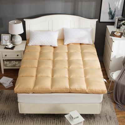 2019新款-立体充绒款床垫 0.9m 2驼色