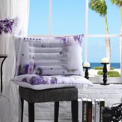 炫彩熏衣草枕系列 1