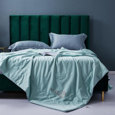 新款全小提花大豆纤维空调被夏凉被纯棉夏天单双人夏季薄被子夏被芯 200X230cm 绿色